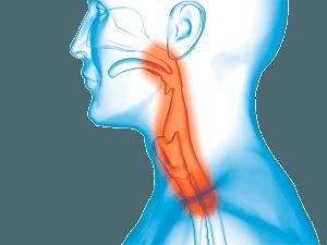 Voice hygiene health